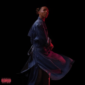 Have a Good Time (feat. Jamila Woods) - Single Mp3 Download