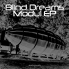 Blind Dreams - Modulate artwork