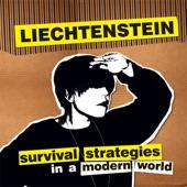 Liechtenstein - Postcard