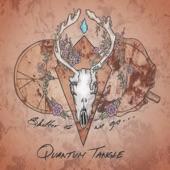 Quantum Tangle - Love Is Love, Pt. 2