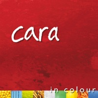 In Colour by Cara on Apple Music