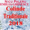 Nicu Paleru - Cadou De Craciun artwork