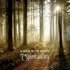 A Walk in the Woods – Spirituality, Mindfulness, Connection with the Divine, Spiritual Growth