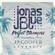 Download Lagu Jonas Blue - Perfect Strangers (feat. JP Cooper) [Acoustic] Mp3