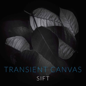 Transient Canvas - Dirty Water
