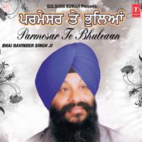 Bhai Ravinder Singh - Parmesar Te Bhuleaan artwork