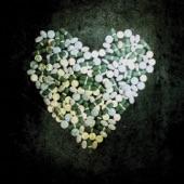 Alkaline Trio - Lead Poisoning