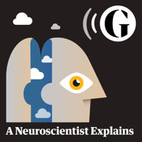 Podcast cover art for A Neuroscientist Explains