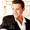 Nathan Carter - Twelfth of Never (2015 Version) artwork