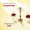 Acapeldridge - Master the Tempest Is Raging artwork