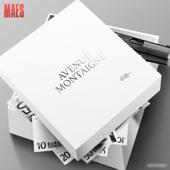 Avenue Montaigne Maes