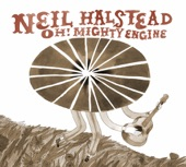 Neil Halstead - Queen Bee