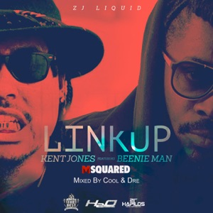 Link Up (feat. Beenie Man) - Single Mp3 Download