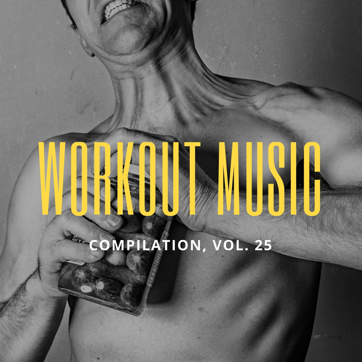 Workout Music, Vol 25 Album Cover by Various Artists