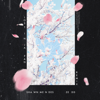 Lost in Japan Remix - Shawn Mendes & Zedd mp3