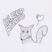 SLEEP.RADIO - Hate Is an Attractive Force