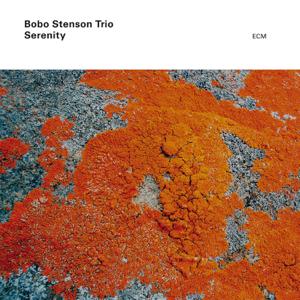 Bobo Stenson Trio - Serenity