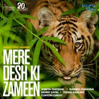 Mere Desh Ki Zameen - Single
