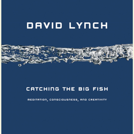 Catching the Big Fish: Meditation, Consciousness, and Creativity (Unabridged) - David Lynch MP3 Download