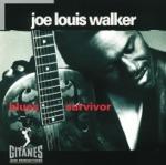 Joe Louis Walker - Shake For Me