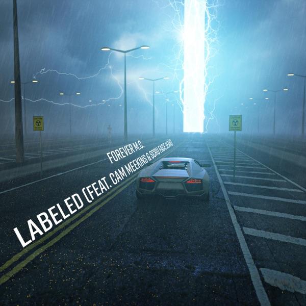 Labeled (feat. Cam Meekins & Scru Face Jean) - Single