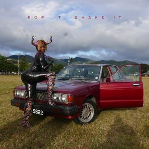 Pop It, Shake It (feat. DJ Mustard) - Single Mp3 Download