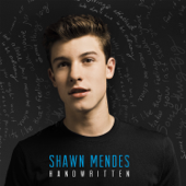 Imagination - Shawn Mendes