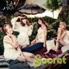 Secret - Starlight Moonlight artwork