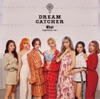 What - dream catcher