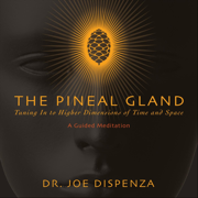 The Pineal Gland: Tuning in to Higher Dimensions of Time and Space - Dr. Joe Dispenza - Dr. Joe Dispenza