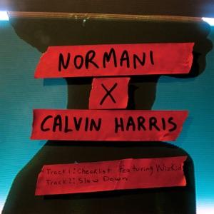 Normani x Calvin Harris - Single Mp3 Download