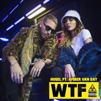 Wtf (Amice rmx) - HUGEL / AMBER VAN DAY