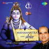 Shri Shiv Mahamantra