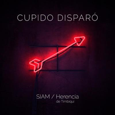 Siam feat. Herencia de Timbiquí - Cupido Disparó [2017]
