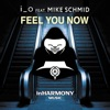 Feel You Now (feat. Mike Schmid) [Extended Mix]
