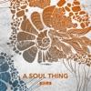 A Soul Thing, Vol. 6