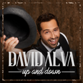 Up and Down - David Alva