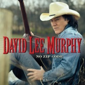 David Lee Murphy - Everything's Gonna Be Alright