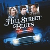 Hill Street Blues, Season 4 - Synopsis and Reviews