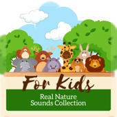 For Kids: Real Nature Sounds Collection to Help Children Learn Mindfulness, Meditation & Yoga