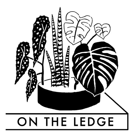 Cover image of On The Ledge