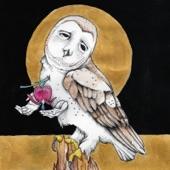 Kevin Morby & Waxahatchee - The Dark Don't Hide It