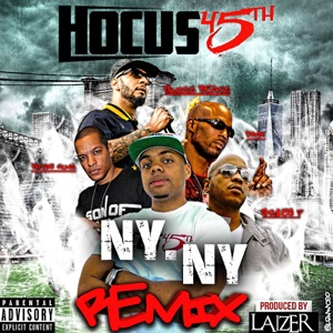 NY NY (Remix) [feat. DMX, Swizz Beats, Styles P & Peter Gunz] - Single Mp3 Download
