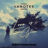 Love Is Gone Robert Cristian Remix Single