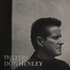 Don Henley - The Boys of Summer bild