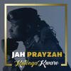 Jah Prayzah - Muchinjiko artwork