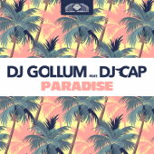 Paradise (feat. DJ Cap) [Radio Edit]