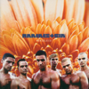 Rammstein - Heirate mich artwork