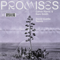 Calvin Harris, Sam Smith