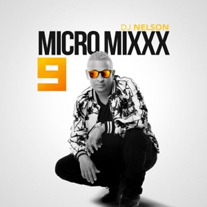 Micro Mixx, Vol. 9 - Single Mp3 Download